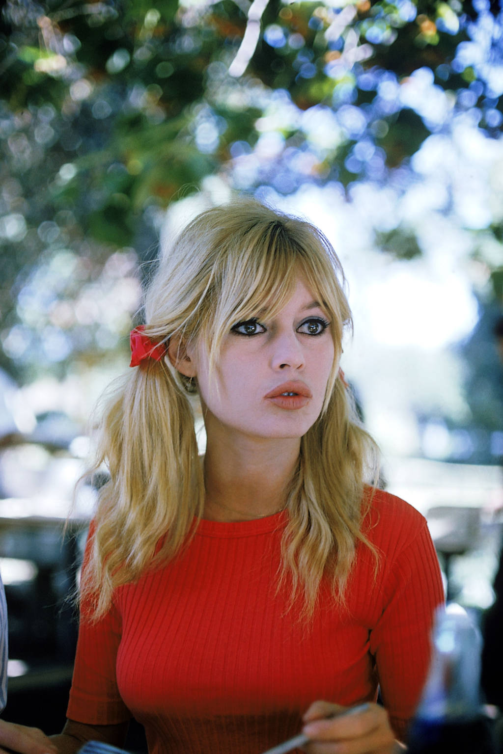 Happy Birthday Brigitte Bardot Reds Hair
